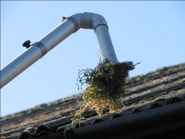 Gutter Cleaning Brighton And Hove Tel 01273 319017