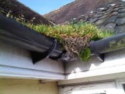 Gutter Cleaning Crawley